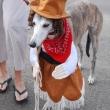cowgirlhound_costume