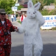 rabbit_costume