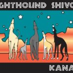 Greyhound Shivoo Kanab